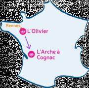 L'Olivier va rencontrer L'Arche à Cognac.