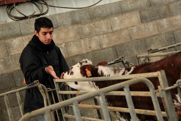 Benoît dans une ferme familiale des bords de la Loire, appartenant à un cousin de Hugues, assistant à Trosly